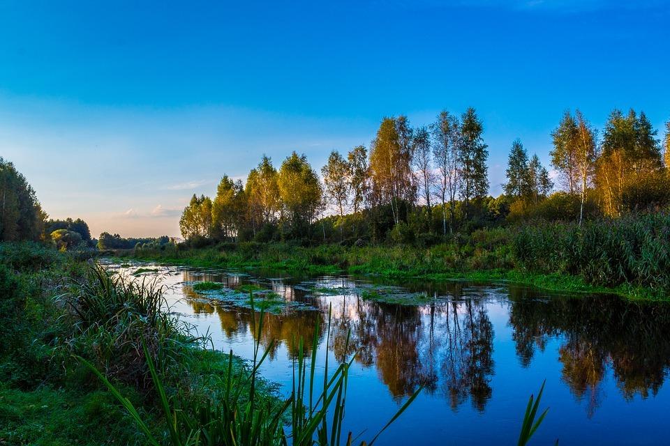 Restauration de l'estuaire de la Petite rivière Cascapédia