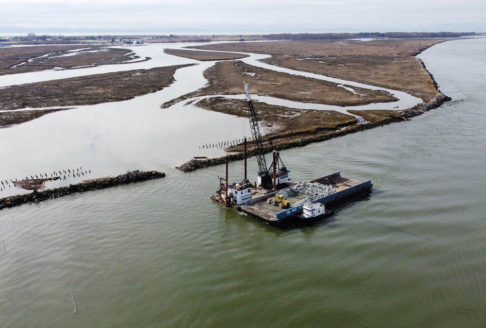 Restoring Marsh and Tidal Channel Habitat on Woodward Island